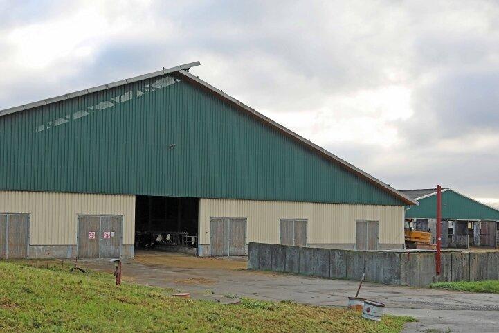 Der Rinderstall in Fraureuth ist einer der Schauplätze im neuen Erzgebirgskrimi.