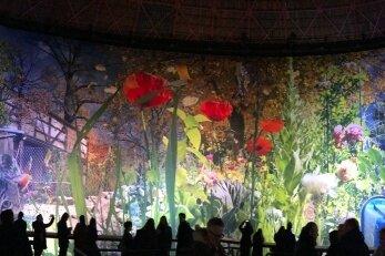 Carolas Garten: Eine Rückkehr ins Paradies