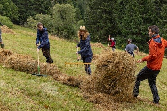 Zwei Wochen Heuernte an den Hängen des Fichtelbergs - da ist vor allem Muskelkraft gefragt.