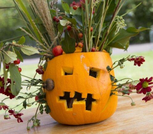 """Halloween-Deko können Kinder im Freizeitzentrum """"Erucula"""" in Mittweida zusammen basteln. Ein ausgehöhlter Kürbis lässt sich zum Beispiel gut als Vase für Blumen nutzen."""