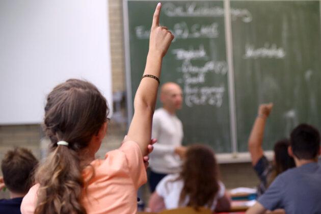 """AfD-Portal: """"Demokratieprojekt"""" oder """"Lehrer-Pranger""""?"""