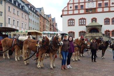 Der Kutschenkorso zum Auftakt des 25. Europäischen Bauernmarktes erreichte sein Ziel am Altmarkt in Plauen.