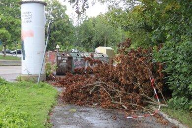 Offenbar wochenlang versperrte ein Baum den Durchgang.