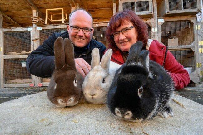 Die Chemnitzer Züchter Silvio und Antje Pause. Diese drei Kaninchen hätten sie gern zur Landesschau in Leipzig gezeigt. Solche Ausstellungen sind die Partnervermittlungsbörsen der Kaninchenwelt.
