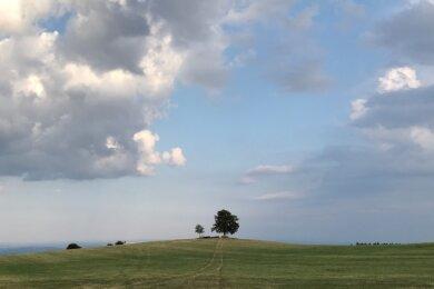 Das ländliche Idyll rund um die Reuther Linde trügt: In ihrer Umgebung braut sich etwas zusammen. Das Landratsamt ist nicht unschuldig daran, ihm hat es an Weitblick gefehlt. Derzeit stehen dadurch sowohl ein Unternehmer als auch dessen klagender Nachbar quasi im Regen.
