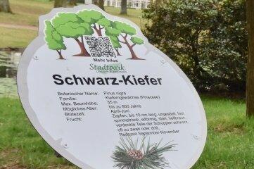 Schilder wie dieses säumen jetzt den Baumlehrpfad im Stadtpark von Limbach-Oberfrohna.