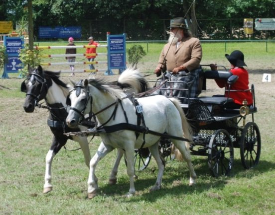Eine Szene aus dem Vor-Corona-Geschehen von Veranstaltungen des Reit- und Fahrvereins in Limbach-Oberfrohna: Kutschfahrerkünste werden bei der Veranstaltung Faszination Pferd präsentiert.