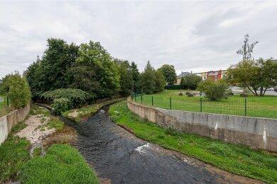 Bevor die Stadt den Kitabau auf dem Gelände rechts starten kann, muss sie den Uferbereich am Zusammenfluss von Wernesbach und Göltzsch dem Hochwasserschutz entsprechend sanieren. Dabei ist auch die Landestalsperrenverwaltung mit involviert.