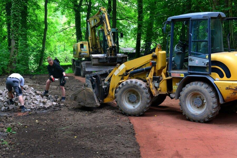 Sanierung abgeschlossen: Auf neuen Wegen den Goethehain entdecken