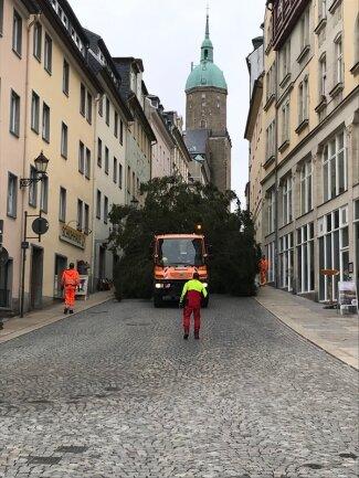 Der Weihnachtsbaum wird die Große Kirchgasse hinunter transportiert.
