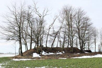Spuren des Bergbaus in Oederan: Zwischen dem Ortsteil Kirchbach und derB 173 gibt es noch eine kleine Halde.