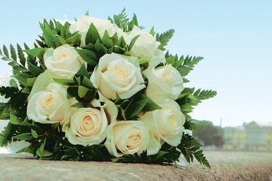 Blumen sollen ins Konzept passen