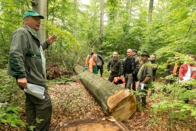 In seinem Hirschberger Revier zeigte Thomas Baader (l.) anschaulich, wie Mischbaumwälder erhalten und zugleich Wertholz im Zuge der erfolgreichen Bewirtschaftung des Waldes erzeugt werden kann.