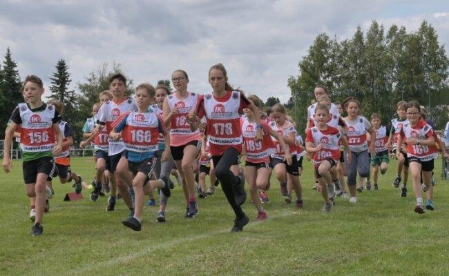 Die Nachwuchsläufer nahmen in Hammerbrücke traditionell die Meilenstrecke über 1,6 Kilometer unter die Füße. Die Sieger auf dieser Distanz waren Emil Matthes (SG Jößnitz) und Miriam Aranyos (SV Grünbach, beide U 8), Hannes Bogler (VSC Klingenthal) und Caroline Wendler (SV Schönheide, beide U 10), Jakob Götzel und Lilly Bogler (beide VSC Klingenthal, U 12) sowie Emilie Poppe (SV Schönheide) und Felix Rausch (TG Herford, beide Fitnessmeile für Erwachsene).