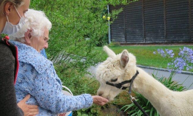 Esther Leistner, die Gast der Tagespflege im Gut Förstel ist, freut sich über den unmittelbaren Kontakt mit den Tieren.