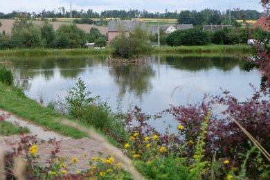Dorfidylle pur: der Schwemmteich. Aber Neuwürschnitz hat noch viel mehr zu bieten als viel Grün und Gewässer - vor allem ein sehr aktives Vereinsleben, das Jung und Alt vereint.