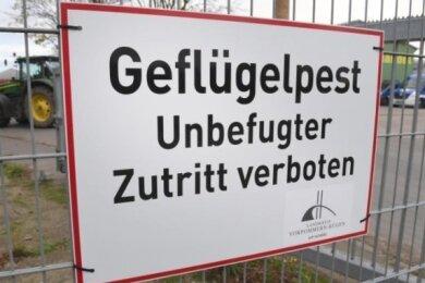 In einer kleinen Geflügelhaltung in Burgstädt ist am Dienstagabend bei einem Huhn die Klassische Geflügelpest durch das Friedrich-Löffler-Institut bestätigt worden.