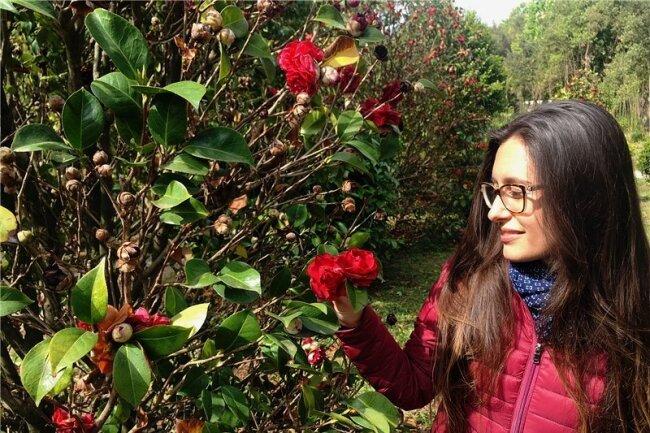 Vollendete Schönheit: Michela bewundert in Pieve di Compito einen Ableger der berühmten Pillnitzer Camelia Japonica.