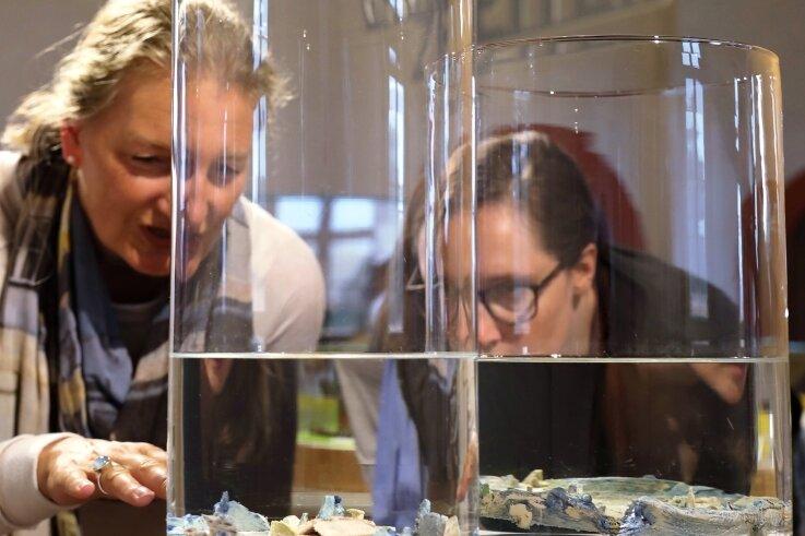 "Laura Selenz aus Köln (r.) und Martina Leicher (aus Bonn) betrachten das Siegerkunstwerk ""Fata Morgana - distance breaker""."