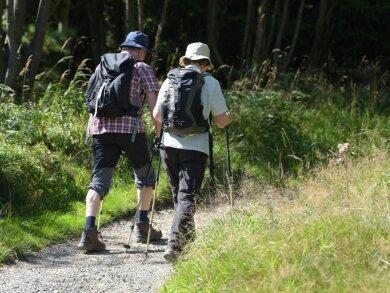 Zwei Wanderer gehen in der Nähe von Altenau im Oberharz über einen schmalen Wanderweg.