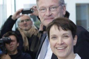Das AfD-Chefduo im März vor der Hauptstadtpresse: die Sächsin Frauke Petry und der Baden-Württemberger Jörg Meuthen.