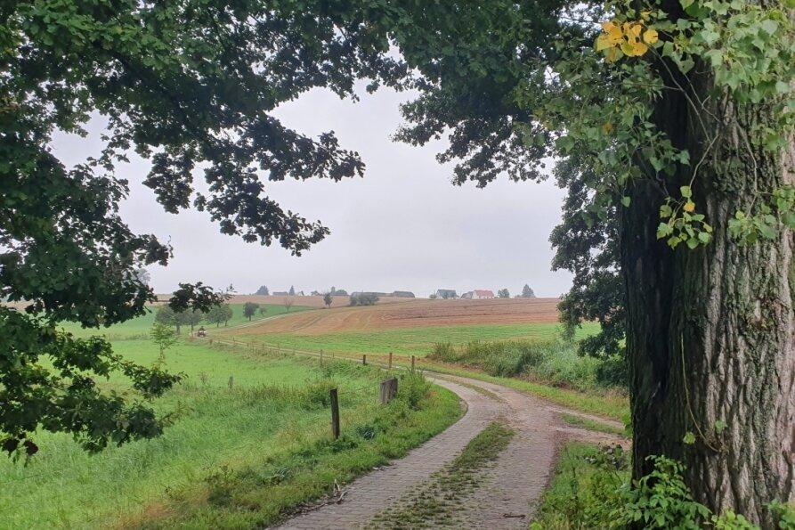 Beim Aufstieg zum Seelitzer Ortsteil Winkeln müssen einige Höhenmeter bewältigt werden.