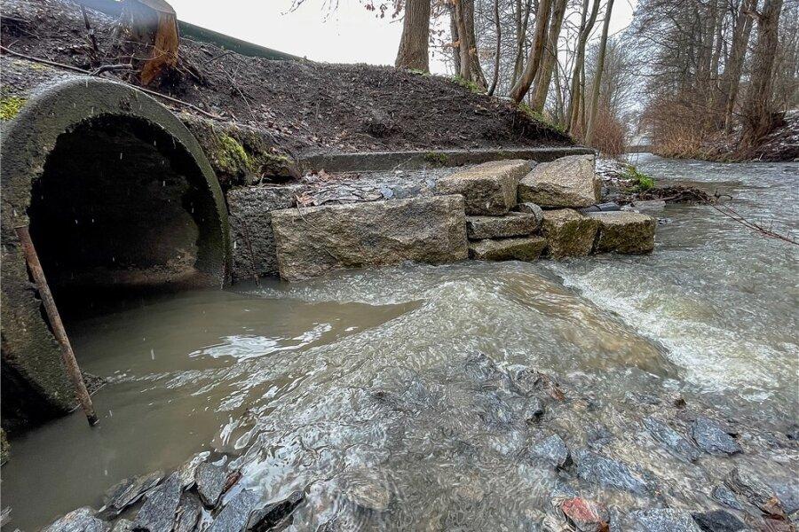 Der Regenüberlauf der Zwav, der im Auerbacher Hofaupark in die Göltzsch mündet.