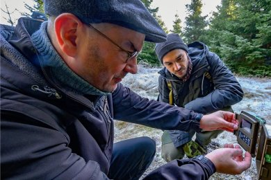 Sven Erlacher (links) vom Naturkundemuseum Chemnitz, der für das Wolfsmonitoring bei Marienberg mit verantwortlich ist, liest an einer Kamera die Karte aus. Begleitet wird er von Konstantin Schanze von der Fachstelle Wolf des Landesamtes für Umwelt, Landwirtschaft und Geologie.