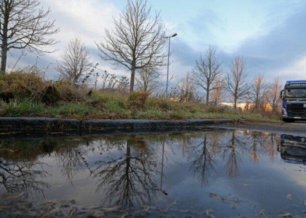 Die Kastanien am Gelände der Geberit im Gewerbegebiet St. Egidien kommen weg. Doch wie viele neue Bäume wird es geben?