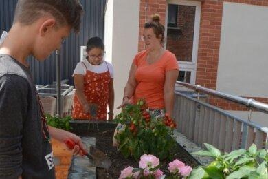 """Freuen sich über das Hochbeet im Falkensteiner Begegnungszentrum """"Vitamin B"""": Jeremy, Shireen und Rebecca Paulus."""