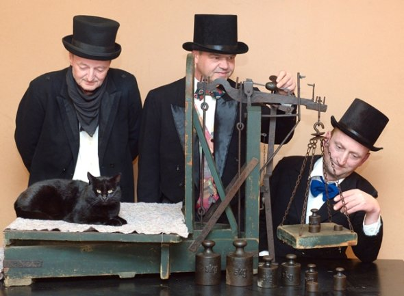 Was die Katze wohl dazu sagen würde? Katzenwieger Jens Lommatzsch und seine Gehilfen Jens Kopra und Jonny May (von links) beim Probewiegen mit Kater Nero.
