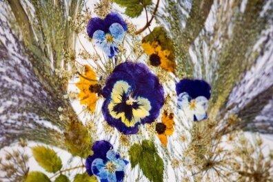 Blütenbilder sind im Museum zu sehen