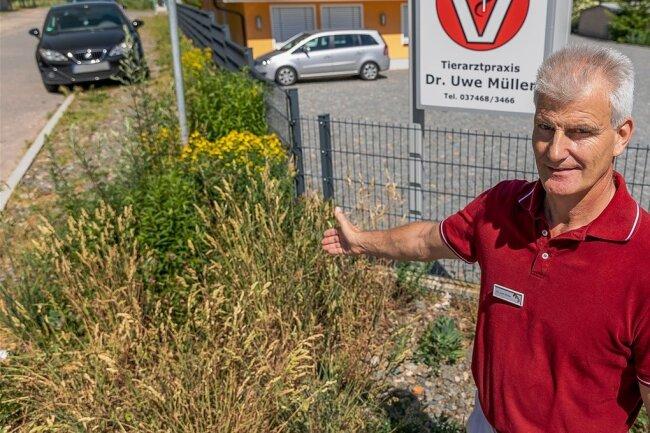 Tierarzt Uwe Müller weist die Stadt Treuen alljährlich aufs Neue auf den Wildwuchs neben seinem Grundstück hin.