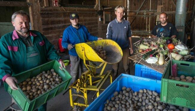 Michael Oebser, Jens Jogwich, Daniel Pistorius und Mario Kirstein (von links) in der alten Scheune, wo derzeit die Kartoffeln abgewogen werden.
