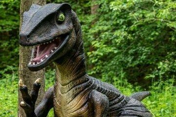 Ein Velociraptor taucht aus dem hohen Gras im Freizeitpark Plohn auf. Heute entfällt dort die Testpflicht.