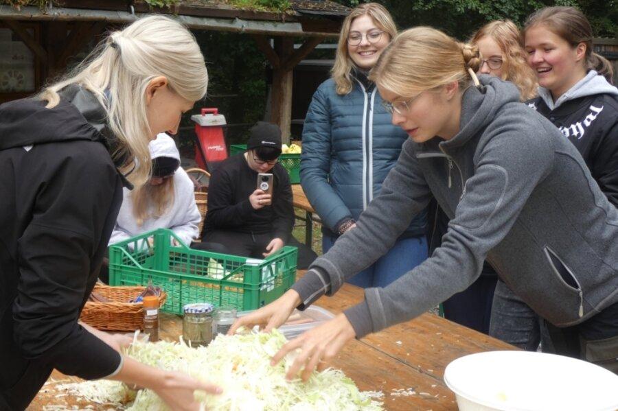Viel zu entdecken und zu schmecken gab es für junge Leute im Freiwilligen Ökologischen Jahr, die sich in Affalter mit Obst, Imkerei und Sauerkraut befassten.