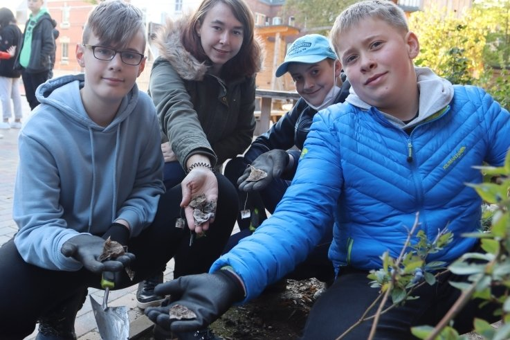 Wissenschaft zum Anfassen im grünen Klassenzimmer: Claudia Weber, Pädagogische Mitarbeiterin, mit Schülern der 6. Klasse beim Ausgraben der Teebeutel auf dem Schulhof der Kompaktschule in Zwickau.