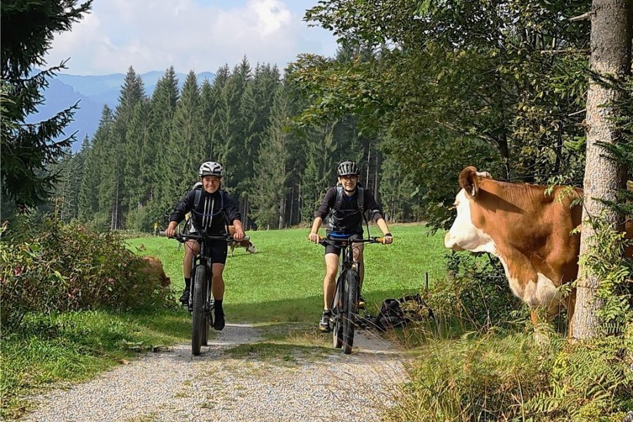Die Kuh ist den Anblick vermutlich schon gewöhnt: Den KAT Bike gibt es seit drei Jahren.