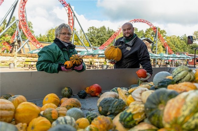 Sabine Pippig und Kevin Raithel vom Park-Team verteilen tausende Kürbisse als stimmungsvolle Halloween-Dekoration im Freizeitpark.
