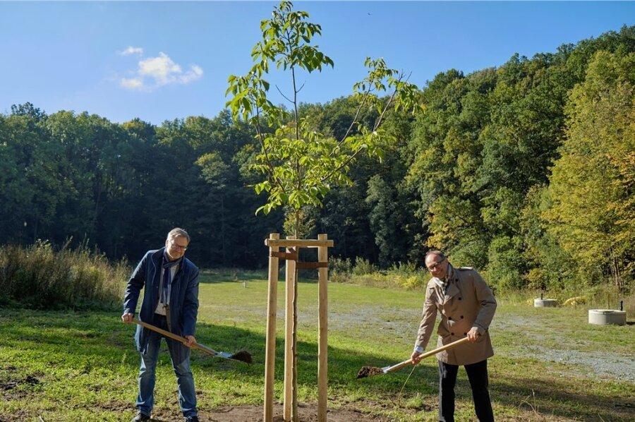 Zum Spaten griffen am Donnerstag Oberbürgermeister Raphael Kürzinger (links) und Markus Hübsch, Geschäftsführer von Mahle Industrial Thermal Systems. Nach der erfolgten Altlastensanierung auf dem ehemaligen Apparatebau-Areal am Hirschstein in Mylau wurde hier ein Walnussbaum gepflanzt.