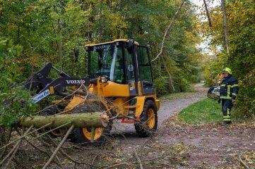 Bei Seelitz stürzten Bäume um, auch eine Telefonleitung und ein Strommast wurden beschädigt.