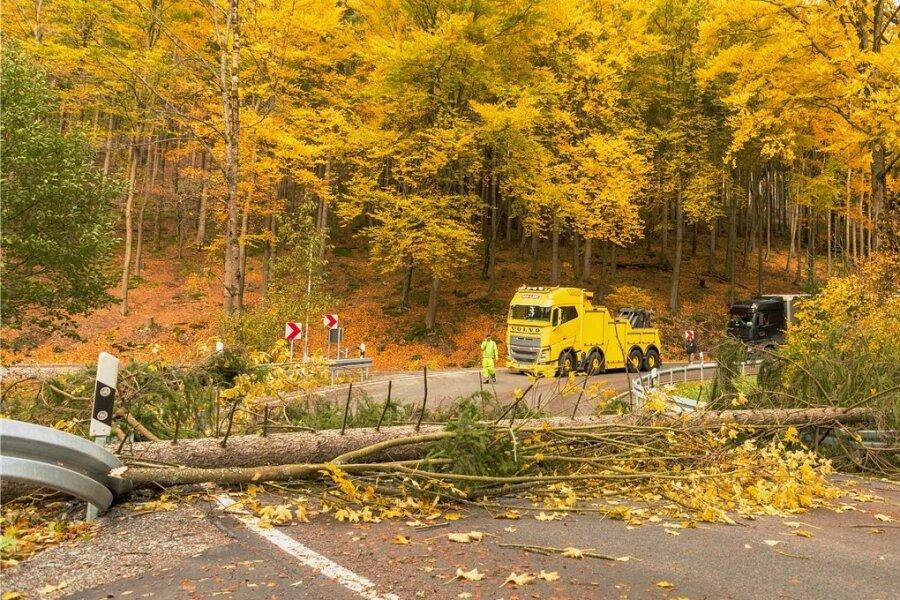 Einen Baum legte der Sturm am Mittag quer über die Staatsstraße, die von Schwarzenberg nach Sosa führt. Damit war die Kurve im Halsbachtal blockiert, auch die Leitplanken wurden beschädigt.