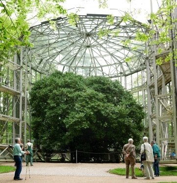 Das heutige gläserne Schutzhaus wurde 1992 aus Glas und Stahl gefertigt.