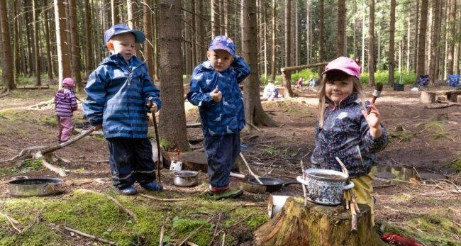 Ein Waldstück in Kretscham gehört zu den Lieblingsplätzen der Mädchen und Jungen aus der Kindertagesstätte Pusteblume in Neudorf. So oft es geht, sind auch Lenny, Hannes und Naemi (von links) dort zu finden.