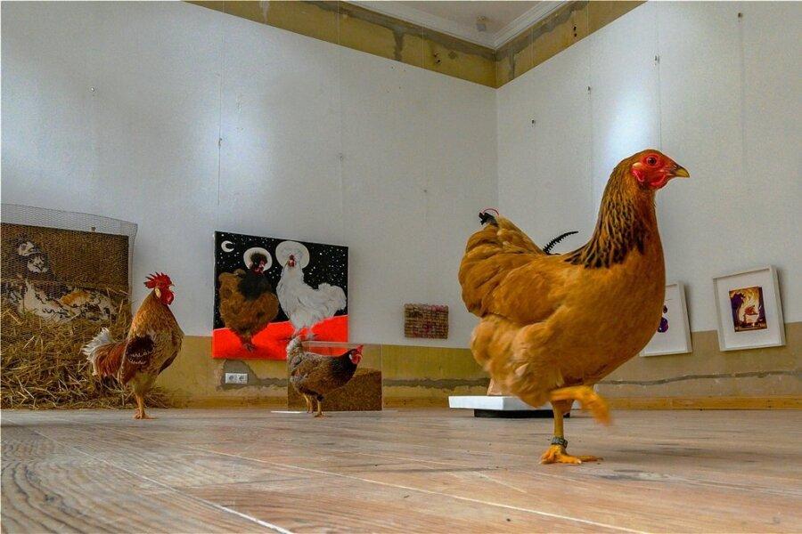 Die neue Ausstellung in der Rebel-Art-Galerie in Chemnitz beschäftigt sich mit Hühnern. Sie ist nur für Hennen und Hähne geöffnet.
