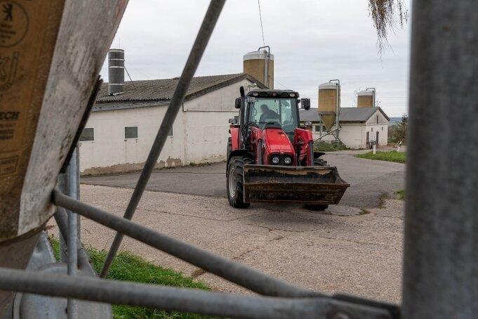 Die Schweinemastanlage Ceesewitz, betrieben durch eine Tochtergesellschaft der Methauer Agro-AG, soll geschlossen werden.