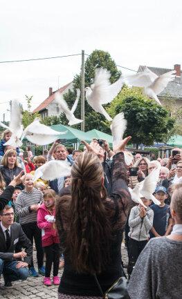 Tauben des Mittweidaer Züchters Markus Weigl stiegen am Samstag als Glücksbringer in den Himmel über der Schule.