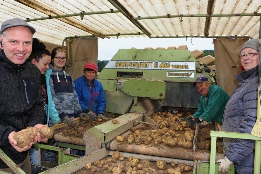 Auf der Kartoffelkombine bei der Arbeit sind Christian Kluge-Sammer mit Mitarbeiterin Susann Hofmann und den Erntehelfern Svenja Strunz, Brunhilde Sammer, Wilfried Meyer und Nadine Strunz (von links), die die Kartoffeln verlesen.