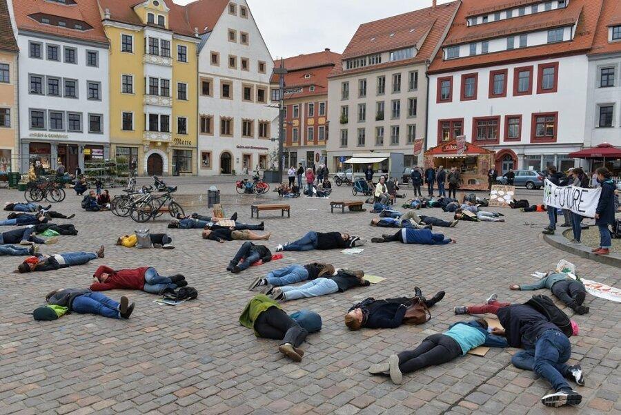 Mit einer Protestaktion auf dem Freiberger Obermarkt haben junge und ältere Freiberger am Freitagnachmittag auf die Klimakrise aufmerksam gemacht und klare Forderungen an die Politik gestellt, die Bewältigung der Klimakrise ernsthaft anzugehen.