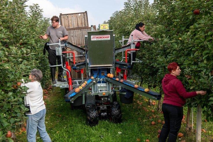 Bei der Apfelernte der Obstgutgenossenschaft Seelitz wird derzeit eine Erntehilfe getestet.